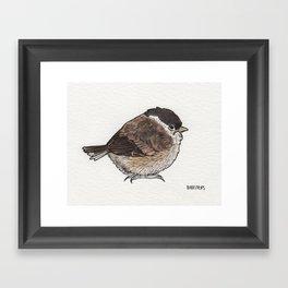 Bird no. 279: What a Day Framed Art Print