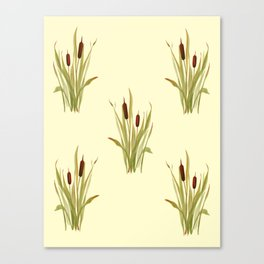 summer cattails Canvas Print