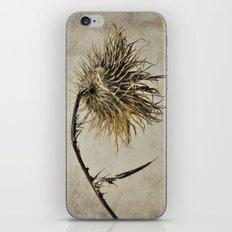 Still Life #4 iPhone & iPod Skin