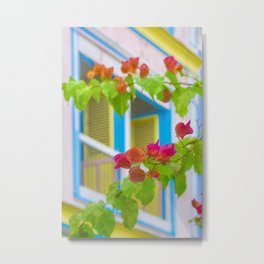 Colored Flowers in Front of Windows House Metal Print