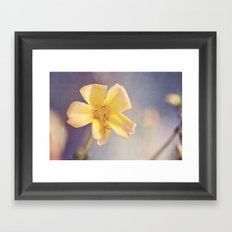 A Little Yellow Flower Framed Art Print
