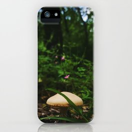 Faerie View iPhone Case