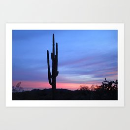 Majestic Saguaro Art Print