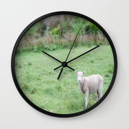 'Sup - Lamb in New Zealand Wall Clock