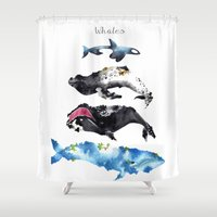 whales Shower Curtains featuring Whales by Amee Cherie Piek