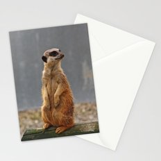 Meerkat No.1 Stationery Cards