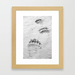 Bear Tracks Framed Art Print