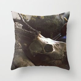 WitchCaft Throw Pillow