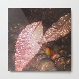 dewdrops on leaves Metal Print