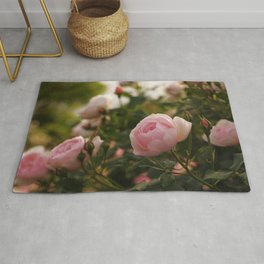 Amazing Romantic Bouquet Pink Rose Blossoms Close Up Ultra HD Rug