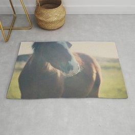 wild ponies print Rug