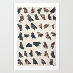 crow-52 Art Print