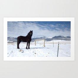 Friesian in the snow 2 Art Print