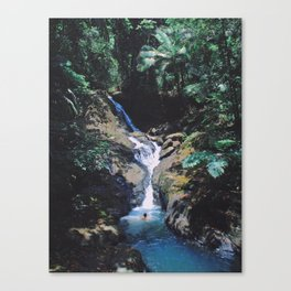 Visions of PR: Eternal Summer Canvas Print