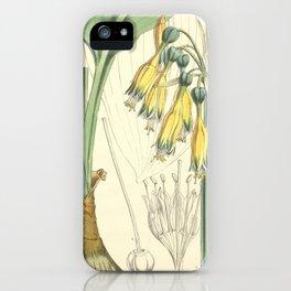 4952 iPhone Case