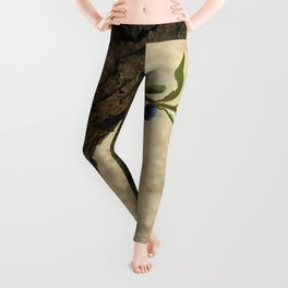 Olive branch Leggings