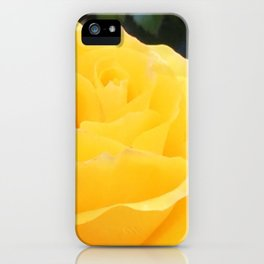 My Yellow Rose iPhone Case
