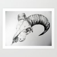 animal skull Art Prints featuring Animal Skull by Kelly Kennell
