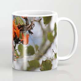 Flame of the Forest Coffee Mug