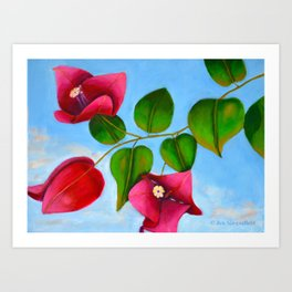 Bougainvilleas on a Sunny Day Art Print