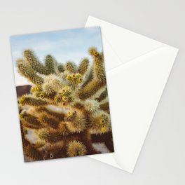 Cholla Cactus Garden IV Stationery Cards