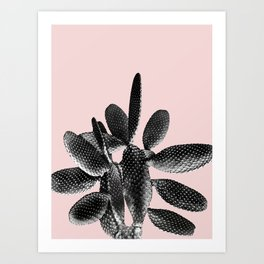 Black Blush Cactus #1 #plant #decor #art #society6 Art Print