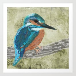 Watercolour Kingfisher bird Art Print