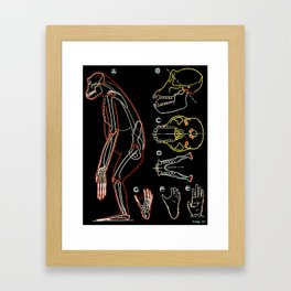 Paul Sougy: The Ape, 1947 (proceeds benefit The Nature Conservancy) Framed Art Print