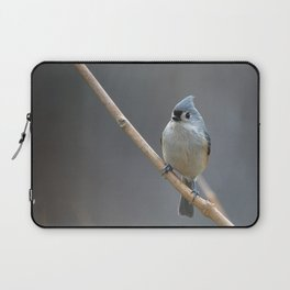 Tufted Titmouse 9639 Laptop Sleeve