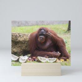 orangutan animals photo Mini Art Print