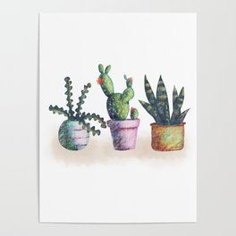 Cacti for cactuslovers Poster