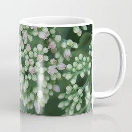 Pastel joy in bloom, flowering plant photography no.4 Coffee Mug