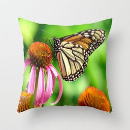 Spotted Butterfly on Cone Flower Throw Pillow