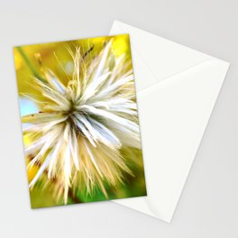 Macro Flower Stationery Cards