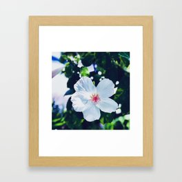 Hibiscus Perfection Framed Art Print