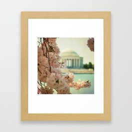 DC Cherry Blossoms Framed Art Print