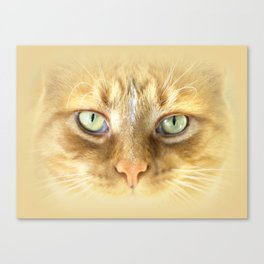 Argy Eyes Vignetted Canvas Print