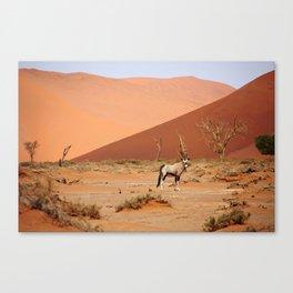 NAMIBIA ... Sossusvlei Oryx II Canvas Print