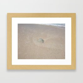 gelly fish Framed Art Print