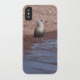 Gull in the Waves iPhone Case