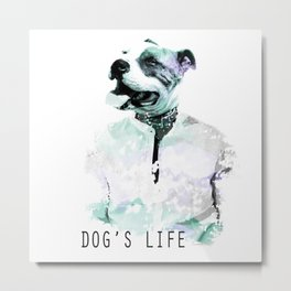 Irony: Dog's Life Metal Print