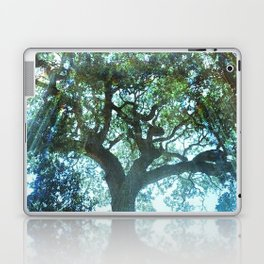 Ramona Oak Tree Laptop & iPad Skin