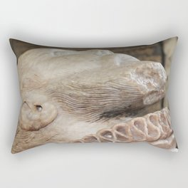 Carved Alabaster Head of Thomas Wentworth  Rectangular Pillow