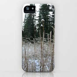 Falltime in Watervalley iPhone Case