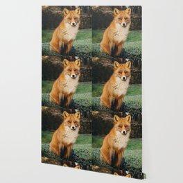 Red Scandinavian Fox Wallpaper