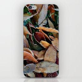 frosty mornings iPhone Skin