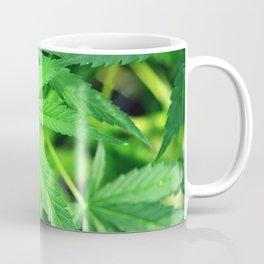 Marijuana plant Coffee Mug