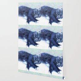 Sleeping Cat Wallpaper