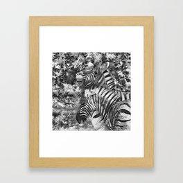 AnimalArtBW_Zebra_20170706_by_JAMColorsSpecial Framed Art Print