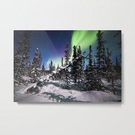 Alaska USA Denali National Park polar light Nature Sky Snow Trees Aurora northern light Metal Print